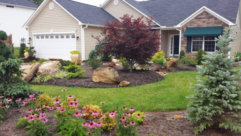 Low Maintenance Backyard Landscaping Ideas low maintenance landscaping ideas