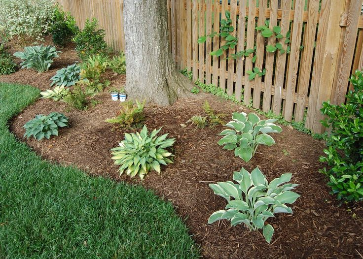 Not All Mulch Is Created Equal