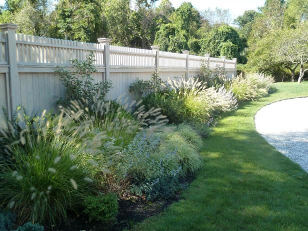 13 Best Ornamental Grasses